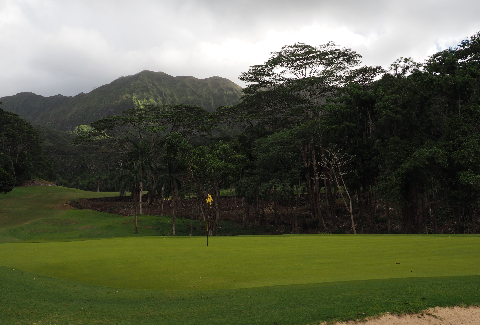 View of a hole on the course at Hawaiian Golf Club